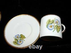 6 Hand Painted Royal Worcester Williamson Flower Demitasse Cups Poppy Pansy Lily