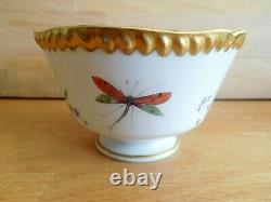 Antique Flight Barr And Barr Porcelain Cup And Saucer With Dragonfly And Flowers