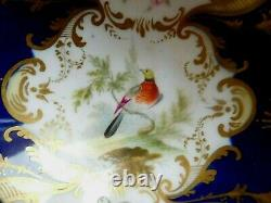 Antique H & R Daniels Cup And Saucer Decorated With Birds And Flowers