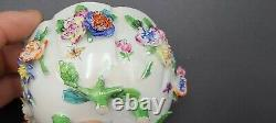 Antique Meissen porcelain flower encrusted Tea cup & Saucer with insects
