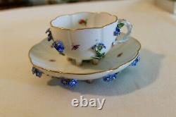 Beautiful Meissen Blue Flower Cup & Saucer Antique