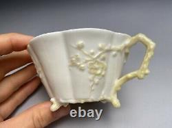 Belleek Black Mark C. 1878 Irish Porcelain Thorn Cherry Blossom Cup & Saucer