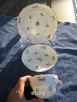 Meissen Porcelain Cup, Saucer & Plate, Mixed Color Flower Pattern