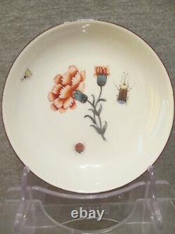 Meissen Porcelain Klinger Bugs & Flowers, Tea Cup & Saucer 1735