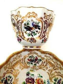 Meissen Porcelain Most Beautiful Painted Birds & Flowers Cabinet Cup & Saucer A