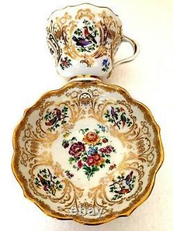Meissen Porcelain Most Beautiful Painted Birds & Flowers Cabinet Cup & Saucer B