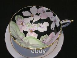 Paragon Fine Bone China Tea Cup and Saucer, H. M. The Queen Mary Colorful Flowers