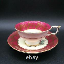 Paragon Lg Cabbage Rose Flower On Maroon Tea Cup & Saucer Set Dbl Warr Cs123