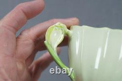 Paragon Pale Green Crocus Flower Handle Bone China Tea Cup & Saucer