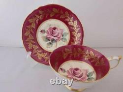 Paragon Single rose bloom Ya tea cup & saucer Vintage
