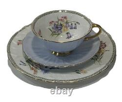 Shelley Bone China Pale Blue Oleander Wild Flowers Trio Cup Saucer & 8 Plate