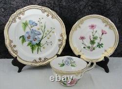 Spode Stafford Flowers Porcelain Salad Plate, Tea Cup, & Saucer Trio Set