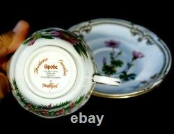 Stunning Spode Stafford Flowers England Cup And Saucer