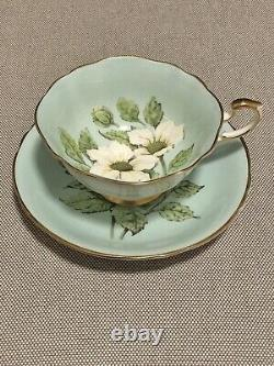VTG Rare Paragon Floating Wild Rose Dogwood White Flowers Tea Cup Saucer Teacup
